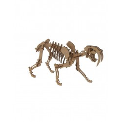 SMILODON - Pocket - Maqueta 3D